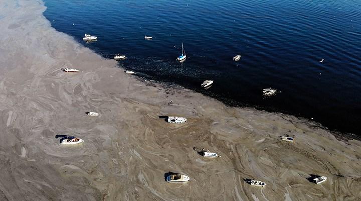 Marmara Denizi müsilaj meselesi nasıl çözülür?